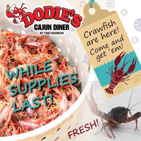 crawfishspecial Av1 web